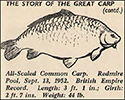 The Story of The Great Carp